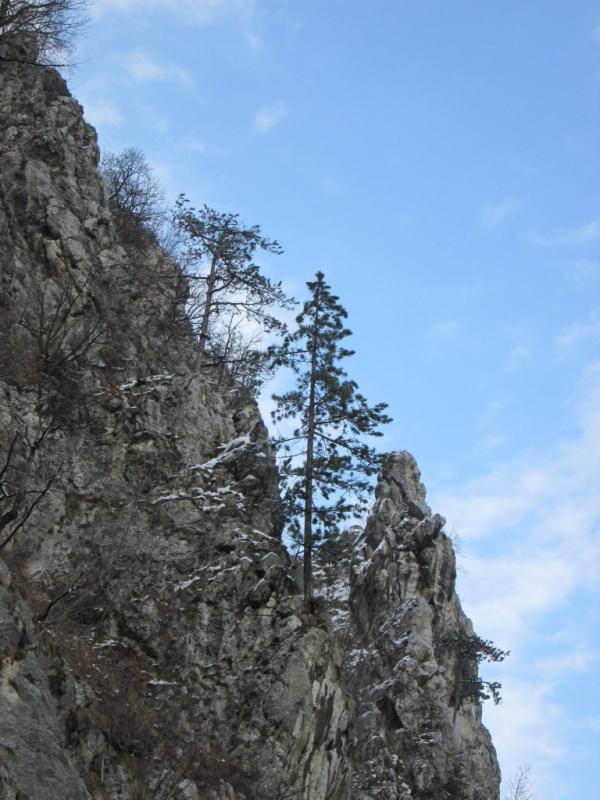 lepote planinarenja