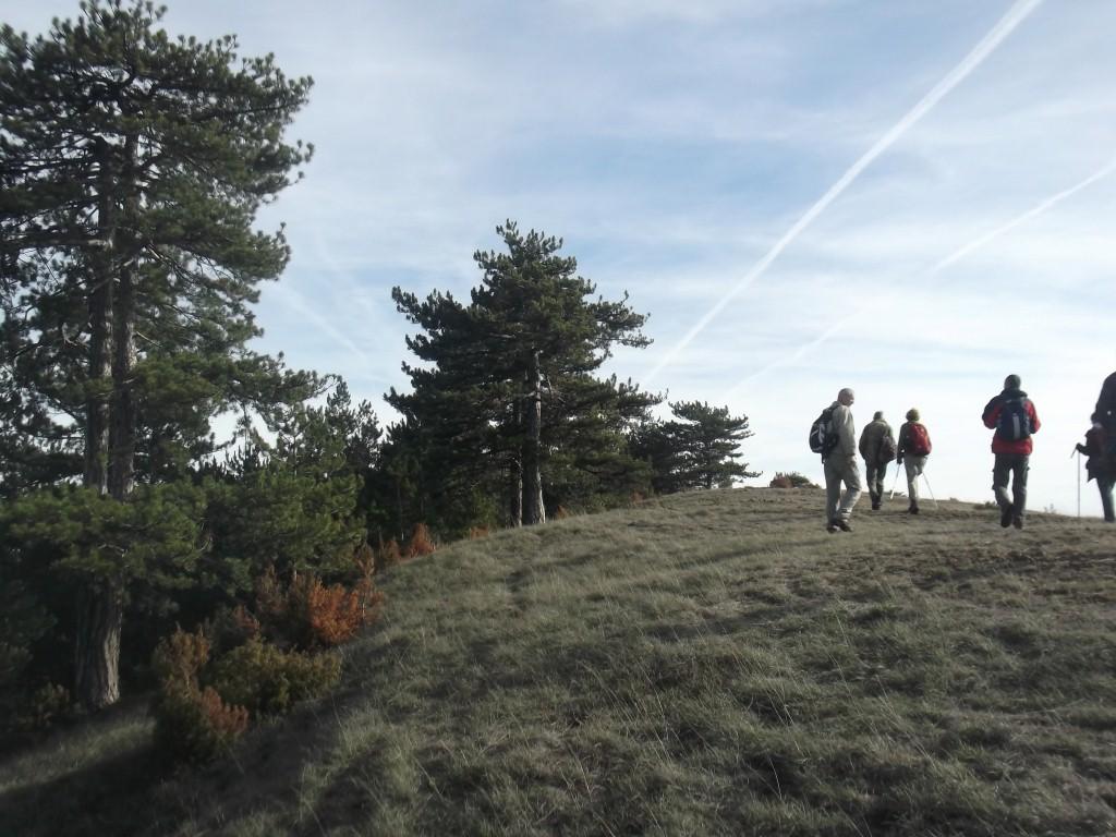 planinari rujno u akciji na zlatiboru