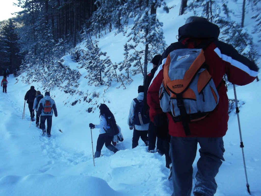 zlatiborski planinari