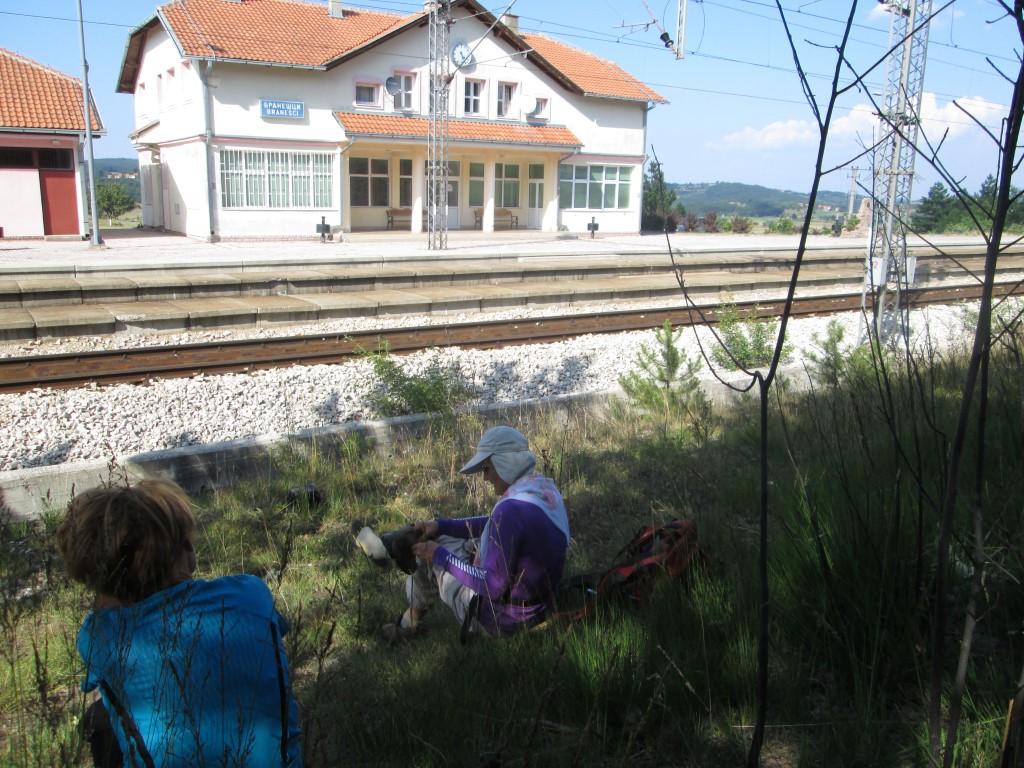 zeleznicka stanica ribnica